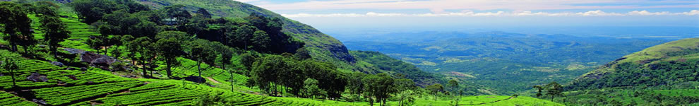 Sri Lanka Adventure Tours