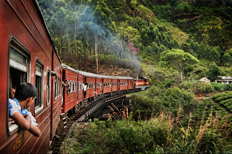 Train Railway Tours