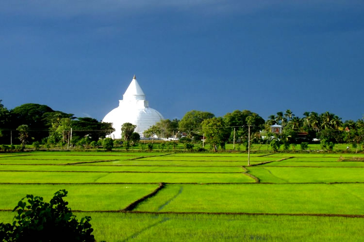 Lanka 3 Day Romantic Tour